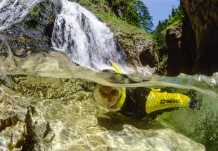no reuse 20 VAR UNTER flussexpedition steyr nationalparkregion unterwasserwelt