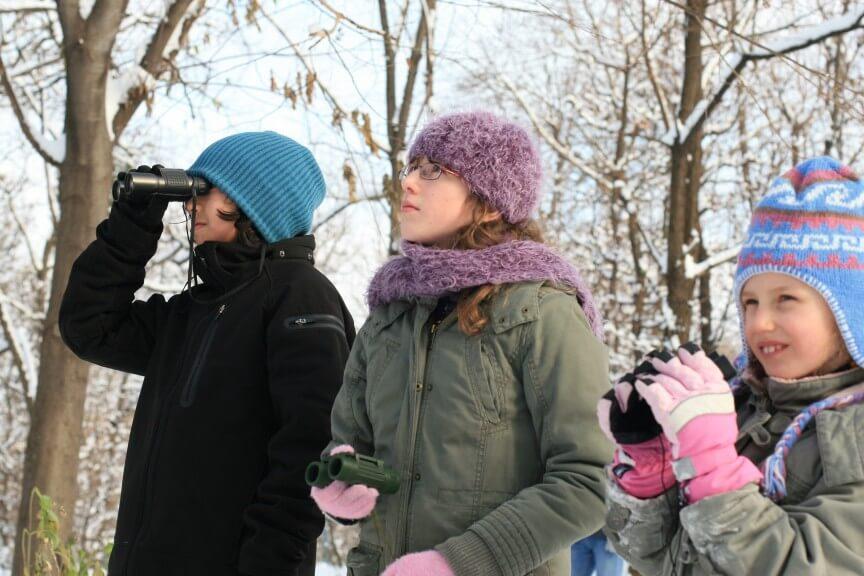Stunde der Wintervögel c BirdLife Brigitte Baldrian