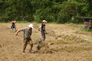 Lanius pflegt Trockenflaechen in der Wachau