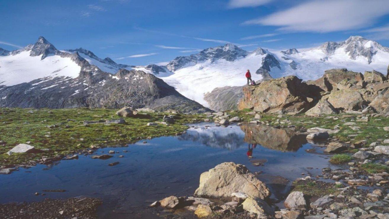 Klimawandel österreich Die Alpen Werden Warm Blühendes österreich