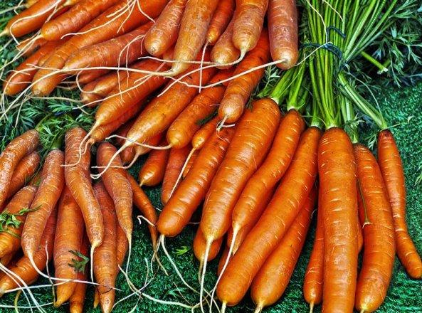 Saisongemuese Karotten