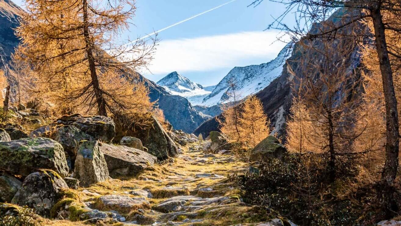 Schutzgebiete Klimawandel