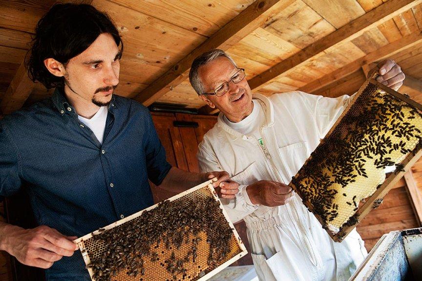 Bienenschutz bei ADEG
