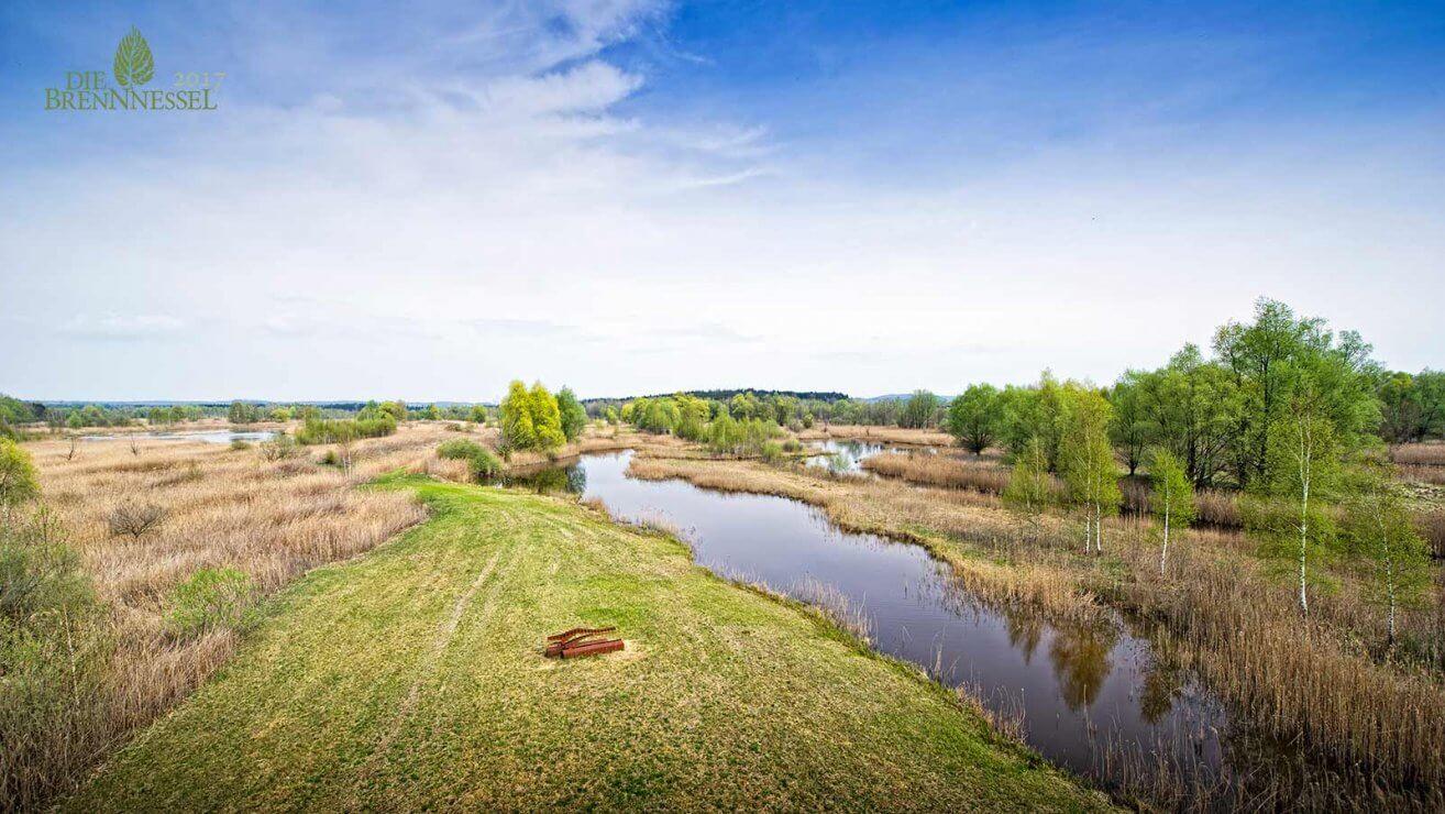 Moor Entstehung - Naturschutz in Lamprechtshausen