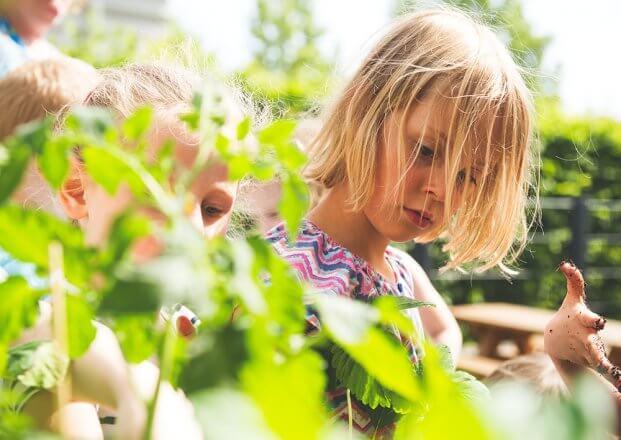 Naturschutz im Kindergarten