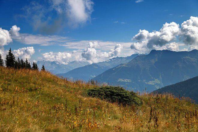 Kraeuterwanderung Vorarlberg