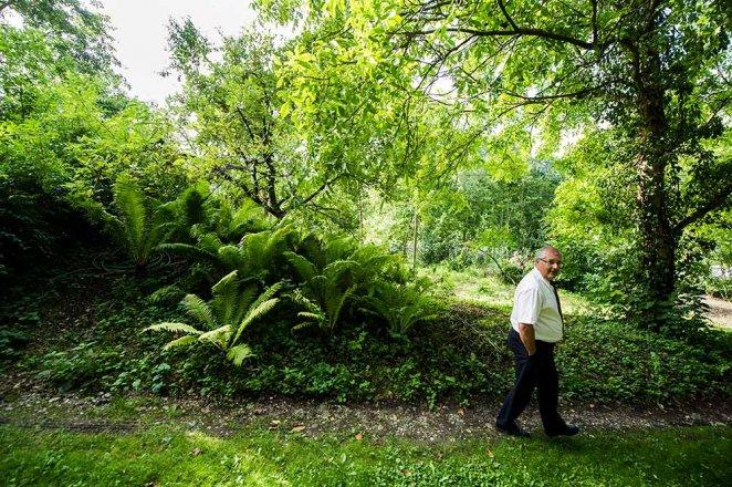 Renaturierung in Absdorf - Ein Naturweg