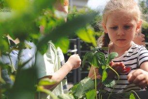 Naturschutz fuer Kinder