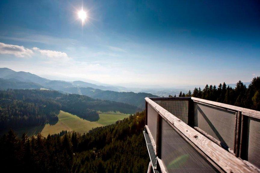Herbstwanderung Wipfelwanderweg Rachau
