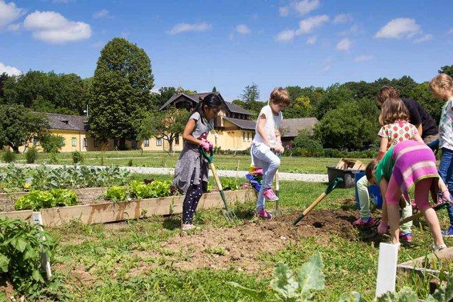 Cityfarm Wien Kinder