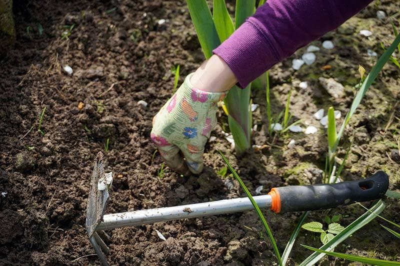 hacken Gartenarbeit