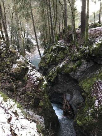 Die Kessischlucht ist Naturdenkmal. (c) Christina Schwann