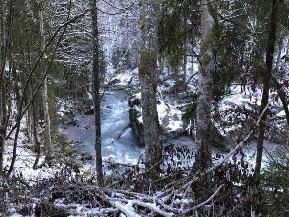 Die Lutz ist in ihrem Oberlauf noch ein echter Wildfluss, der sein Bachbett selbst gestalten darf. Foto: Christina