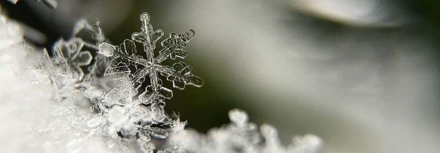 schnee kristall