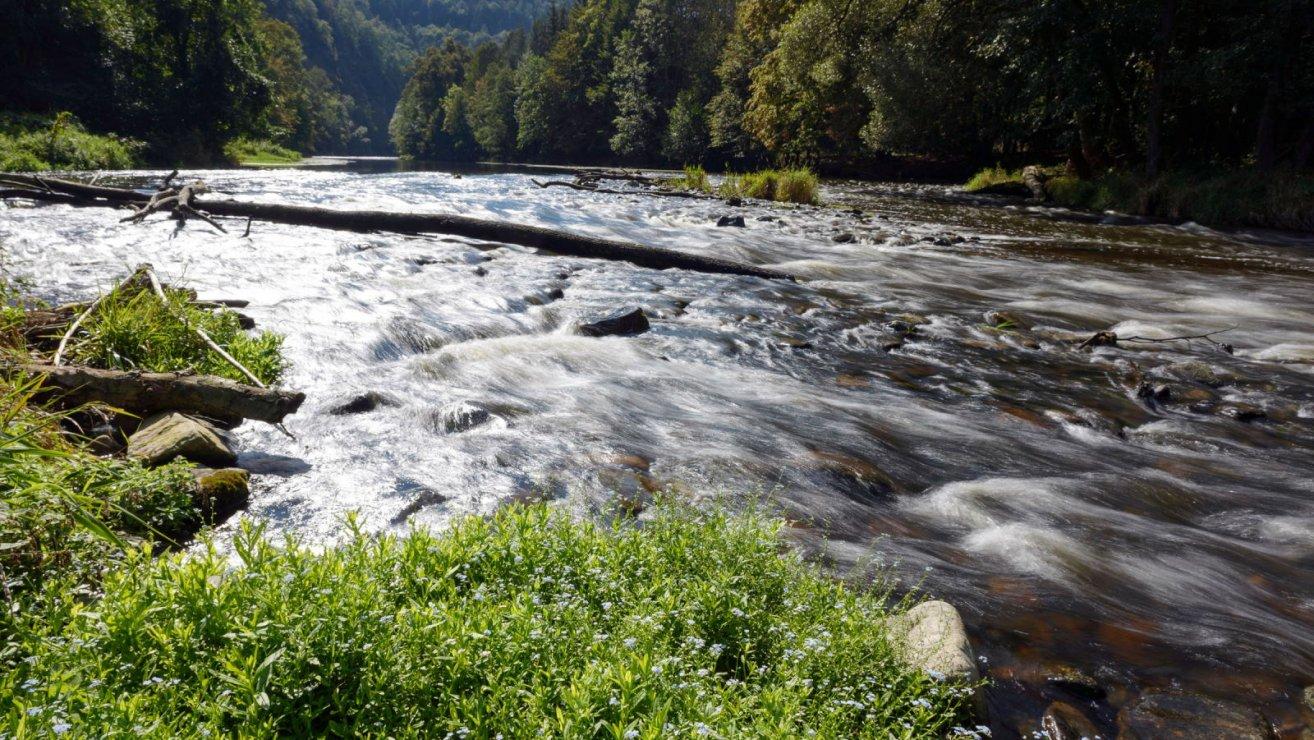 Kamptal: Kraftwerk oder Naturlandschaft? (c) Matthias Schickhofer