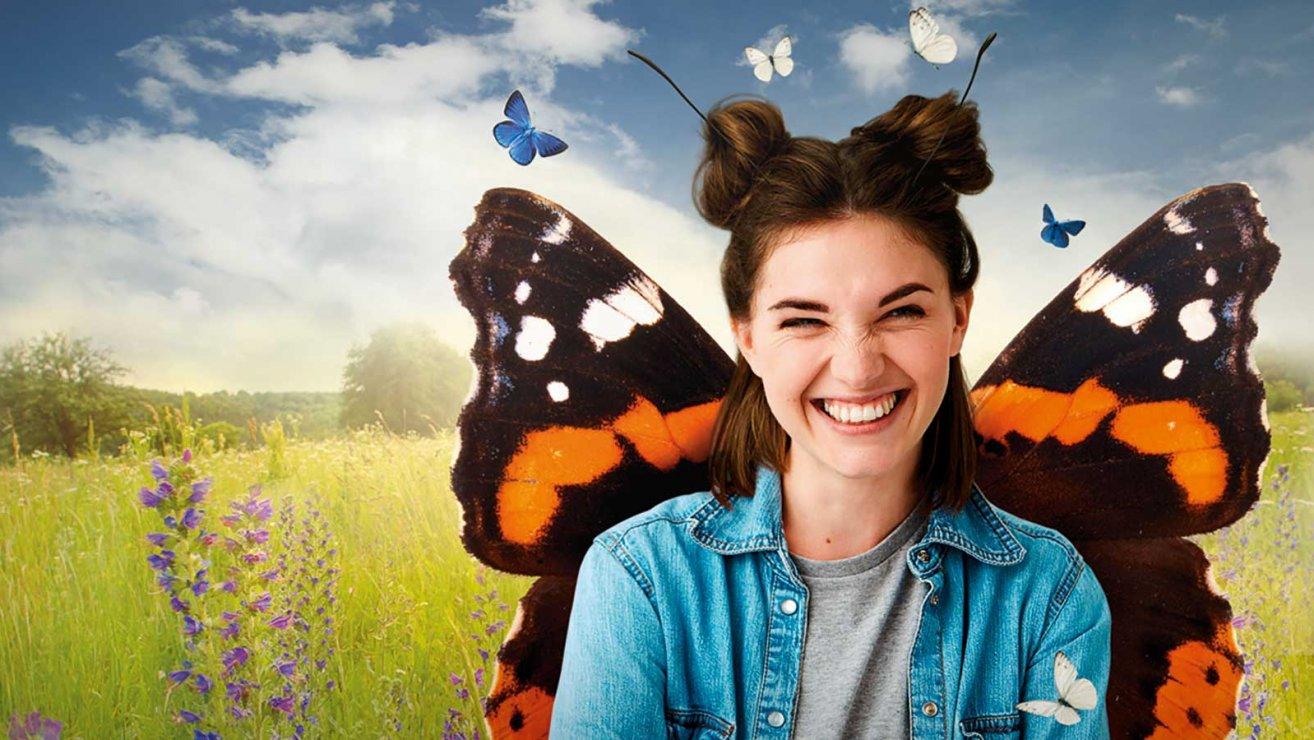 Schmetterling Sujet
